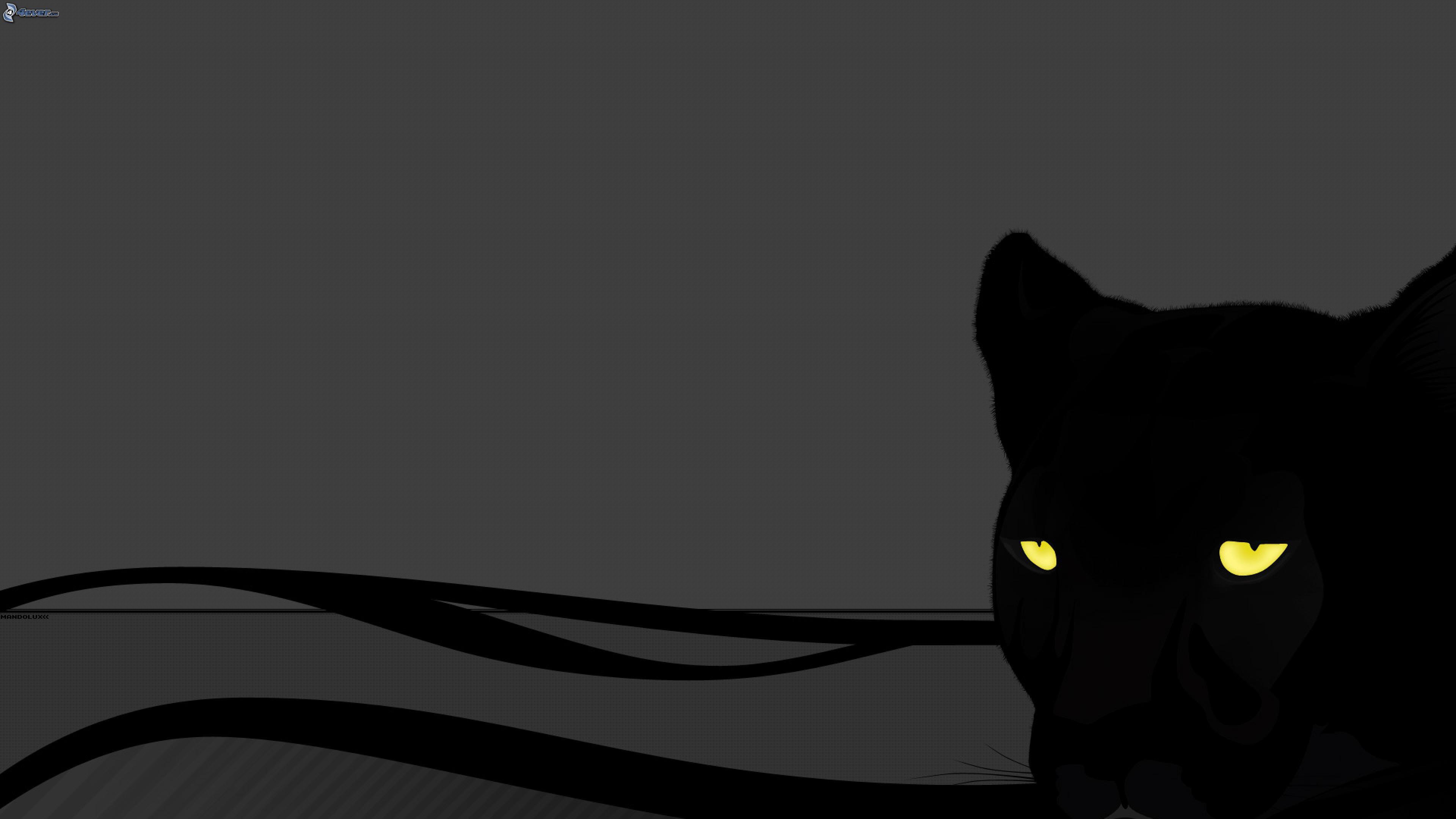 svart puma
